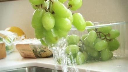 H&S: Safe Food Handling