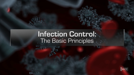 Infection Control: The Basic Principles